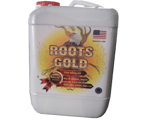 ROOTS GOLD