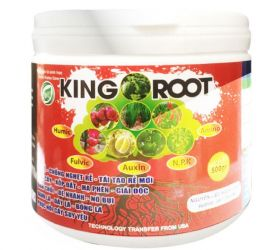 KING ROOT